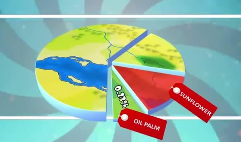 Oil-palm-land-use