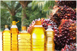 Importance Of Palm Oil In Food